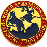 WAMSB International Pin